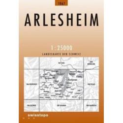 Achat Carte randonnées swisstopo - Arlesheim - 1067