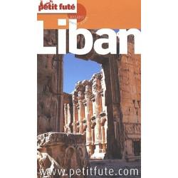 Achat Le Petit Futé Liban