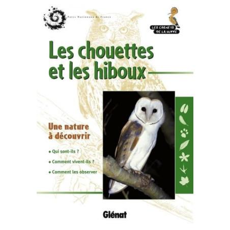 Achat Les chouettes et les hiboux - Glénat