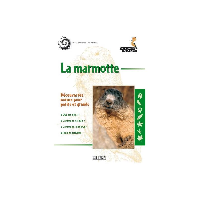 Achat La marmotte - Libris