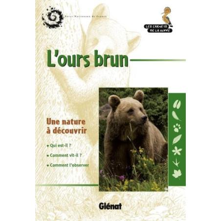 Achat L'ours brun - Glénat