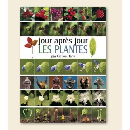 Achat Jour après jour : les plantes - Plume de carotte