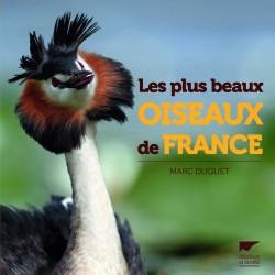 Les plus beaux oiseaux de France - Delachaux