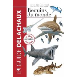 Requins du monde - Delachaux