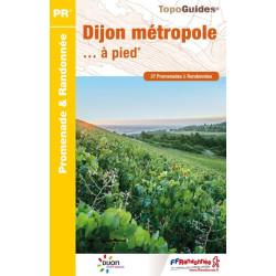 TTopo guide randonnées - Dijon et ses environs à pieds - FFRP P211